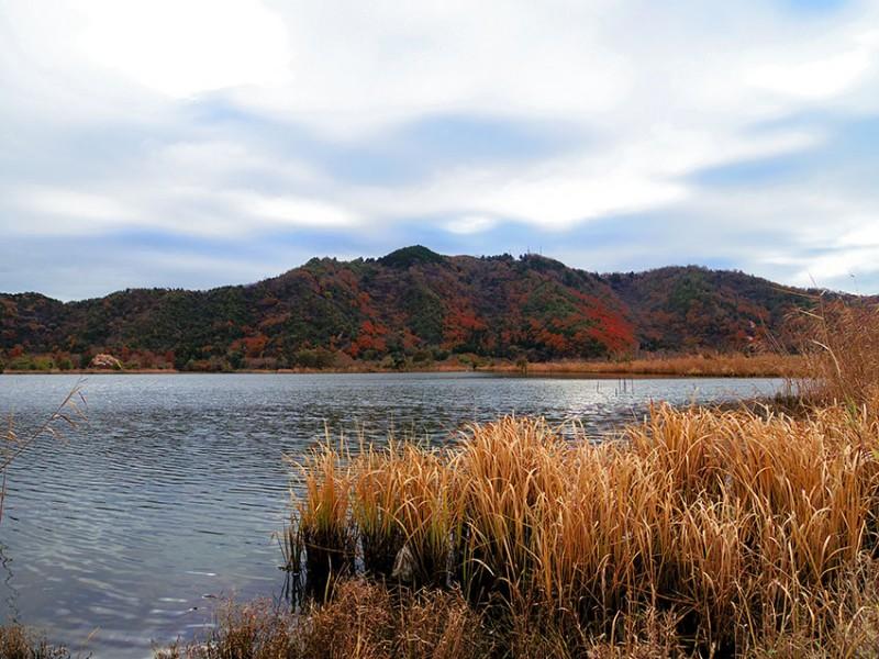 10_琵琶湖